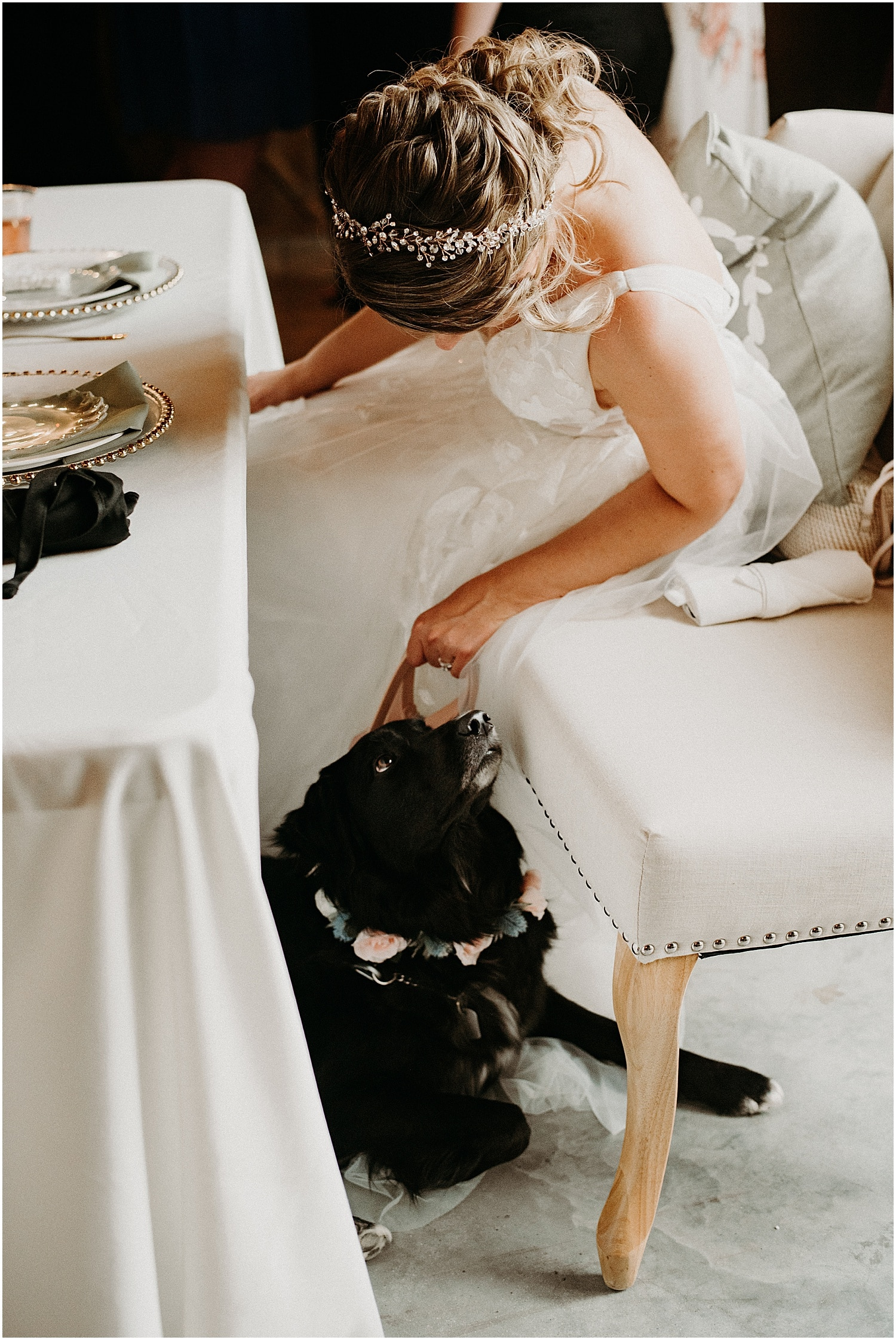bride with her dog during the reception at her Barn at Silver Oaks Wedding