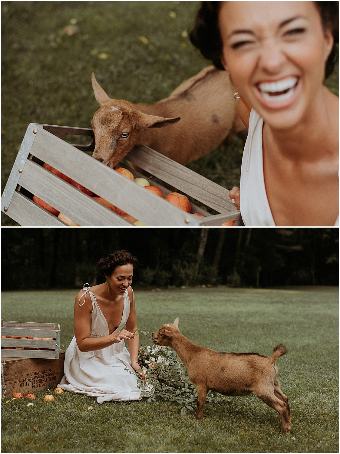 Bride with a joyous look on her face meets a goat at this Josias River Farm Bridal Session