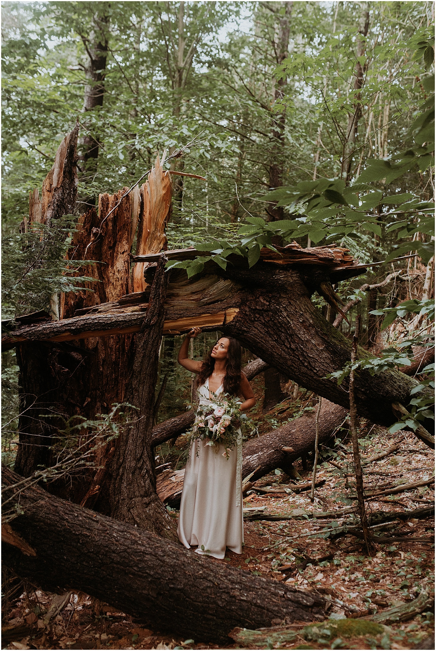 Bride in the woods under a large fallen tree at Josias River Farm