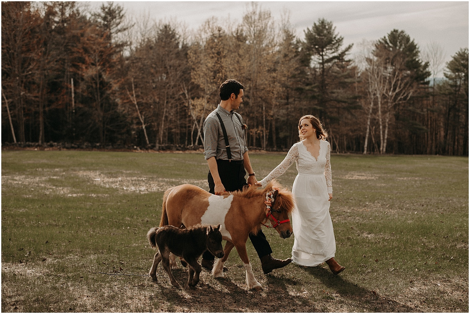 bride and groom walking with mini horses